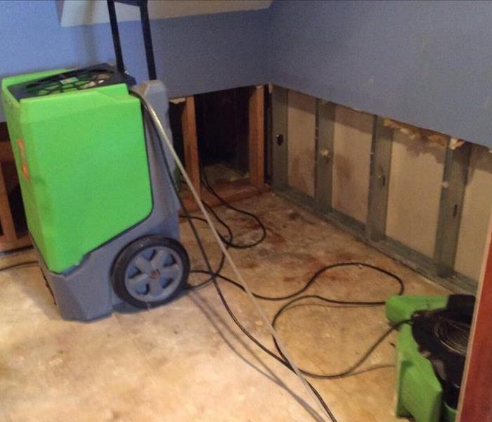 Mold in the Basement? We're The Pro's At Fixing It!