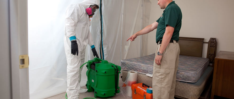 Bordentown, NJ mold removal process